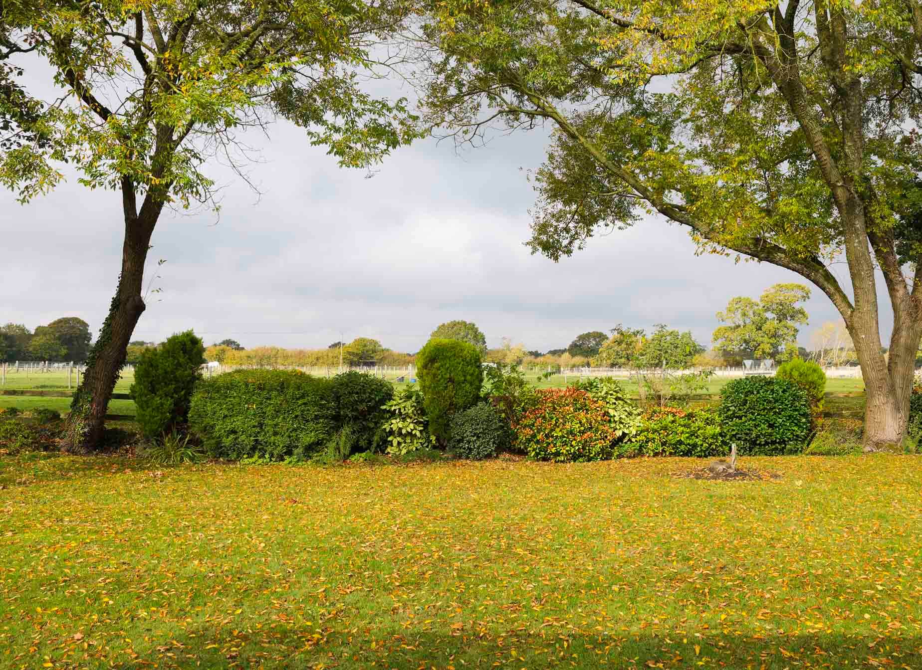 Big gardens and fresh air at Forest Edge, in Pilley village.