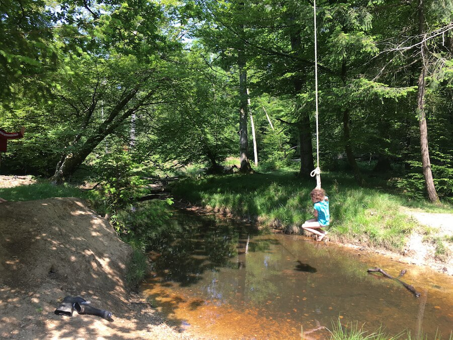 Rope Swing over a River - New Forest